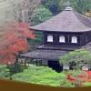 JAPANESE INCENSE KOH