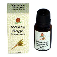 Kamini Fragrance Oil - WHITE SAGE