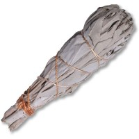 WHITE SAGE Smudge Stick - X-LARGE * Organic