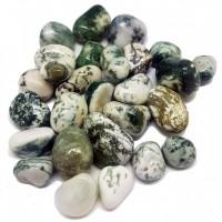 Tumbled Stones - TREE AGATE