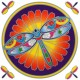 Decal / Window Sticker - Sunseal DRAGONFLY MANDALA