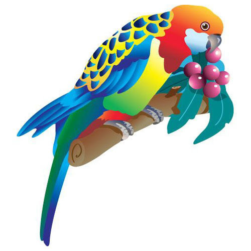 Fridge Magnet - EASTERN ROSELLA