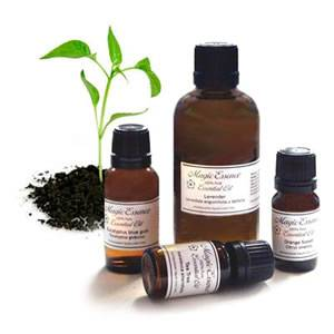 Essential Oil - SANDALWOOD * Organic