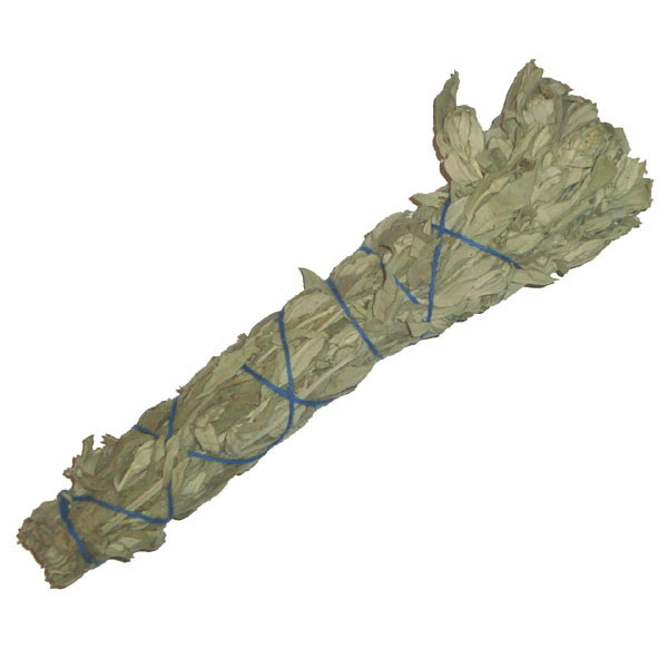 DAKOTA SAGE Smudge Stick * Organic