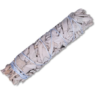 WHITE SAGE Smudge Stick USA - MEDIUM