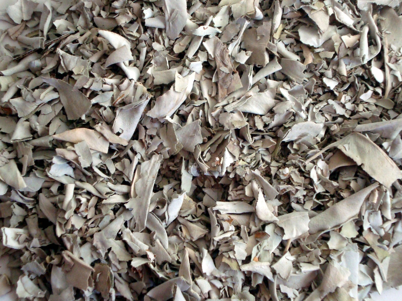 WHITE SAGE Smudge Loose Leaves Crushed