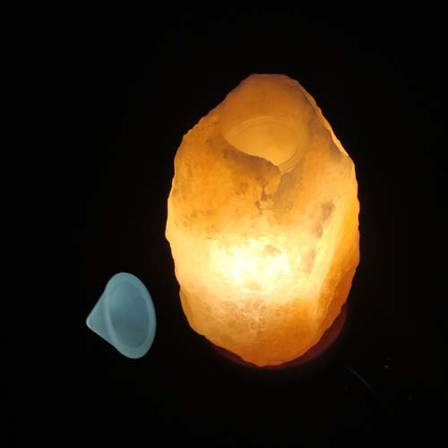 Himalayan Salt Lamp Electric Oil Burner